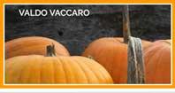 link valdo vaccaro